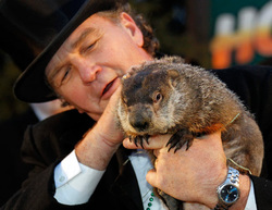 Super Bowl and Ground Hog day with Punxsutawney Phil